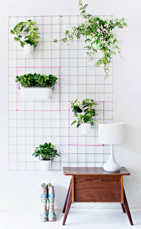 indoor vertical garden from mesh