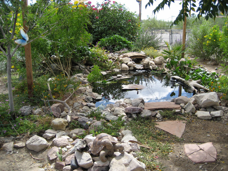Use a pond as part of fire risk management