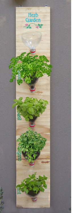 bottle indoor vertical garden