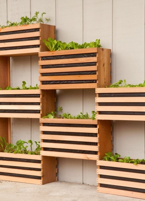indoor vertical garden from wooden boxes