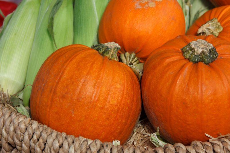 Storing pumpkins