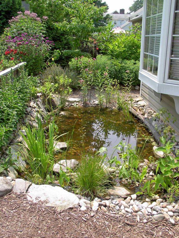 backyard pond ideas