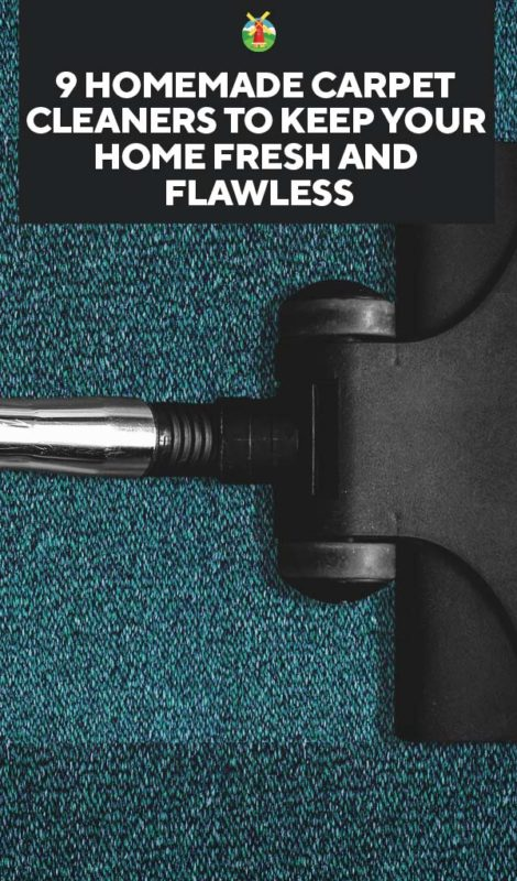 9 Homemade Carpet Cleaners to Keep Your Home Fresh and