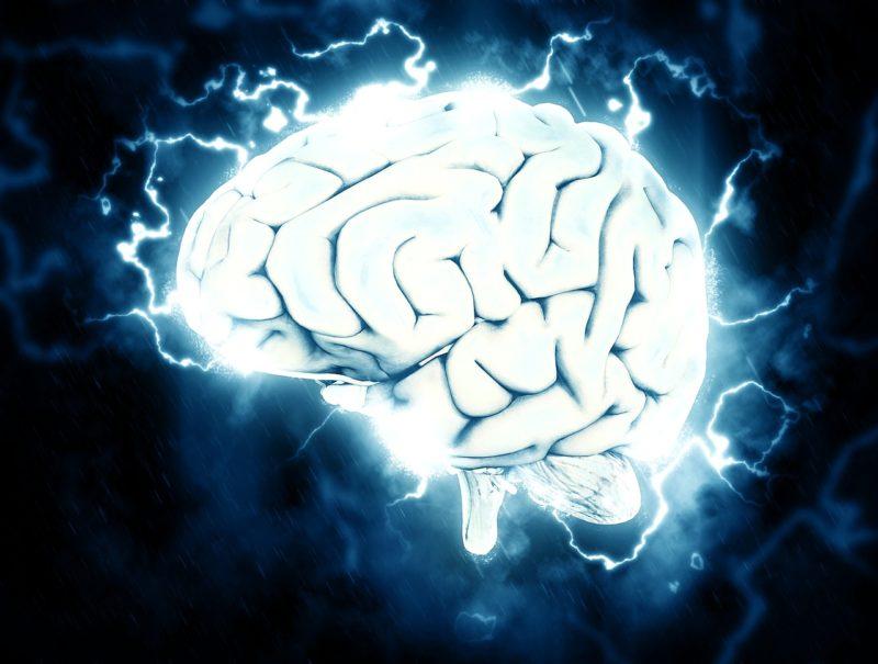 Brain free radicals