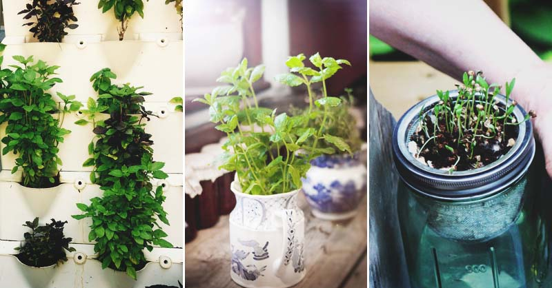 . 46 Indoor Herb Garden Ideas That Will Inspire You to Start Planting