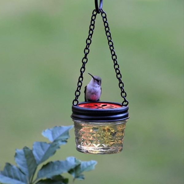 jelly jar homemade hummingbird feeder