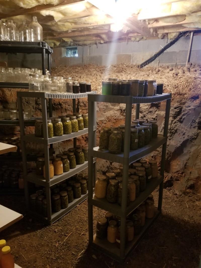 crawlspace into a root cellar