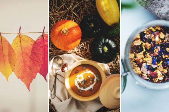 10 Inspiring Fall Homestead Activities to Reconnect with Nature