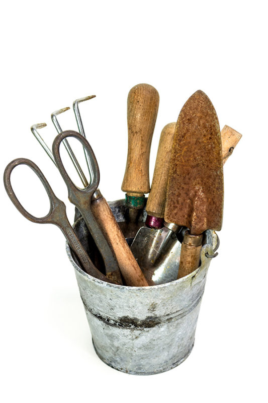 A bucket full of garden hand tools