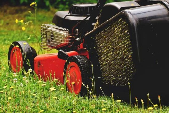 How to Winterize Your Lawn Mower and Be Ready for Spring in 7 Steps