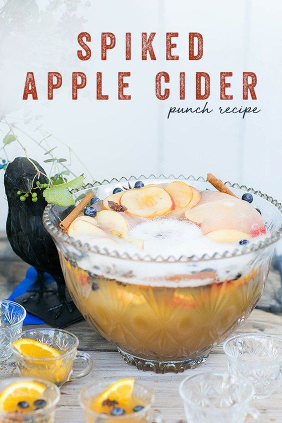 apple cider recipes for punch