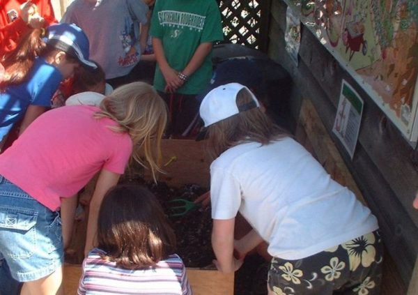 Students leaning over a vermicomposting bin