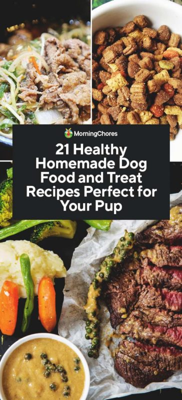 21 Healthy Homemade Dog Food And Treat Recipes Perfect For Your Pup