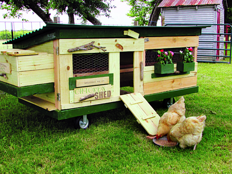 27 Diy Chicken Tractor Plans Your Birds Will Cluck About