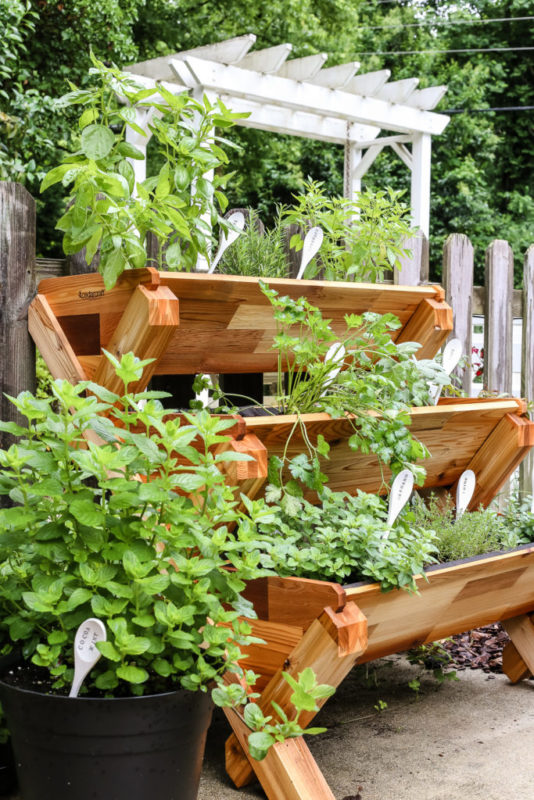 40 Diy Vertical Herb Garden Ideas To Have Fresh Herbs On Hand