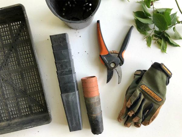 Supplies for planting an herb garden