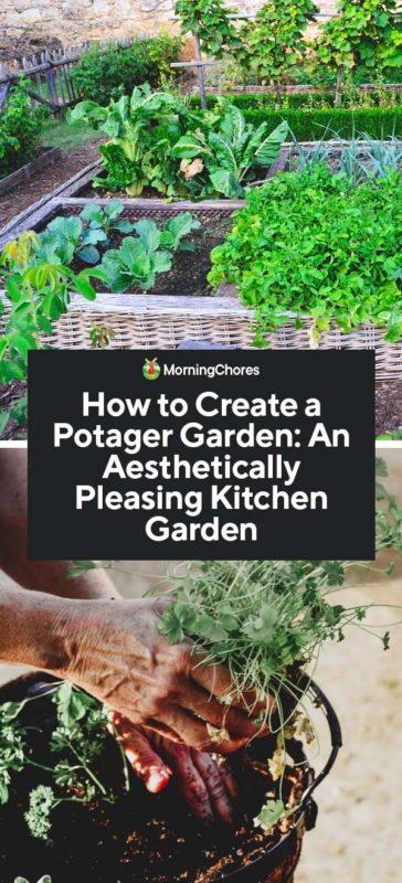 How To Create A Potager Garden An Aesthetically Pleasing Kitchen