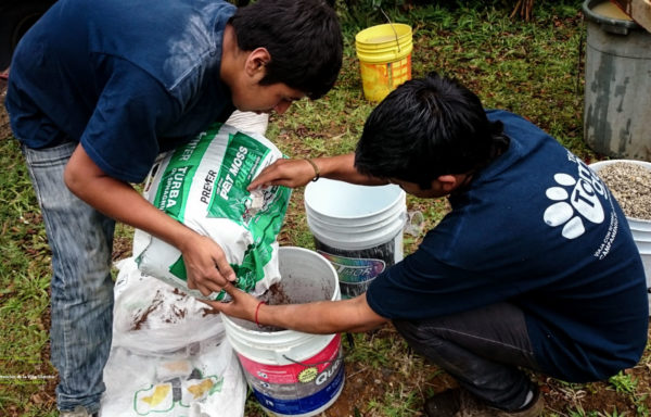 Men putting peat moss into a garden soil mix in a bucket