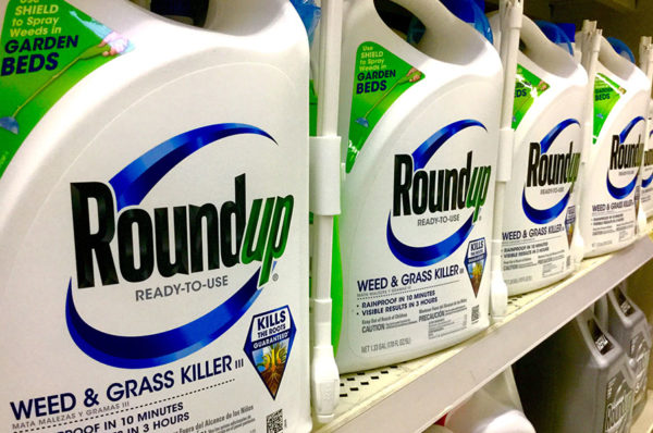 Roundup weed killer bottles