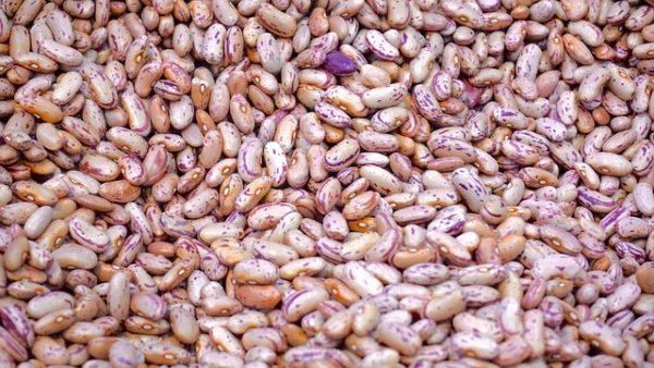 A pile of pinto beans