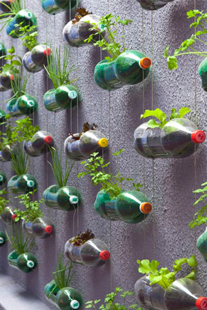 vertical herb gardens