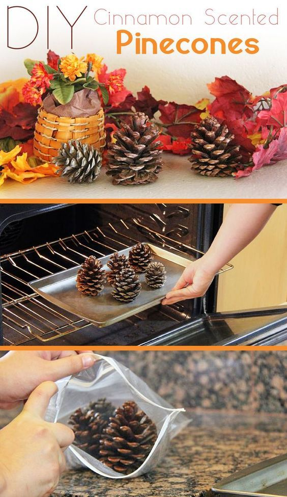 30 Fun Pinecone Crafts Perfect For Making Memories With The Family