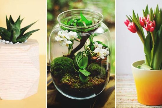 105 Cleverly Creative DIY Planters to Showcase Your Plants