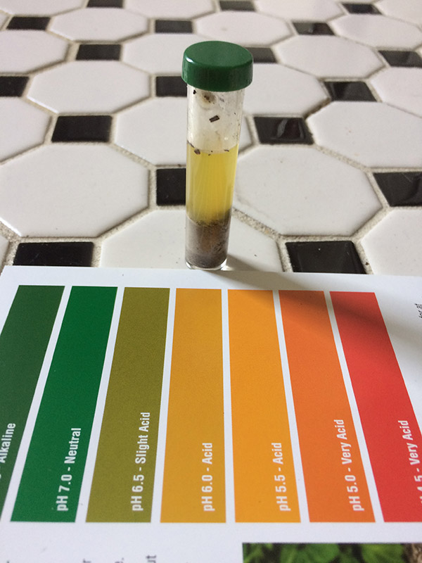 Garden soil pH test strips