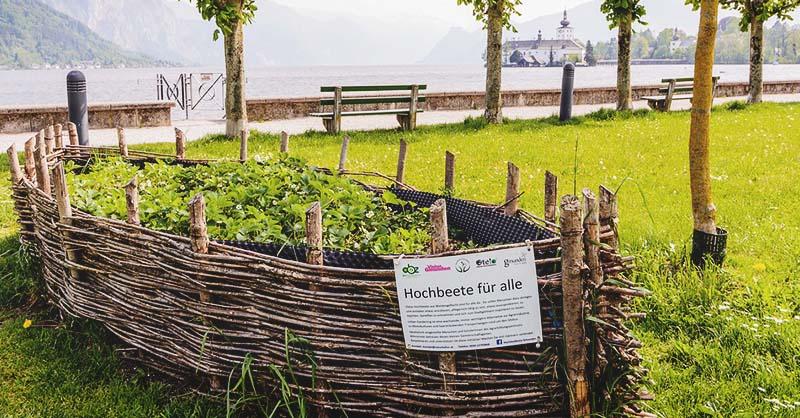 14 Cinderblock Garden Ideas For Your Veggies Flowers And Succulents