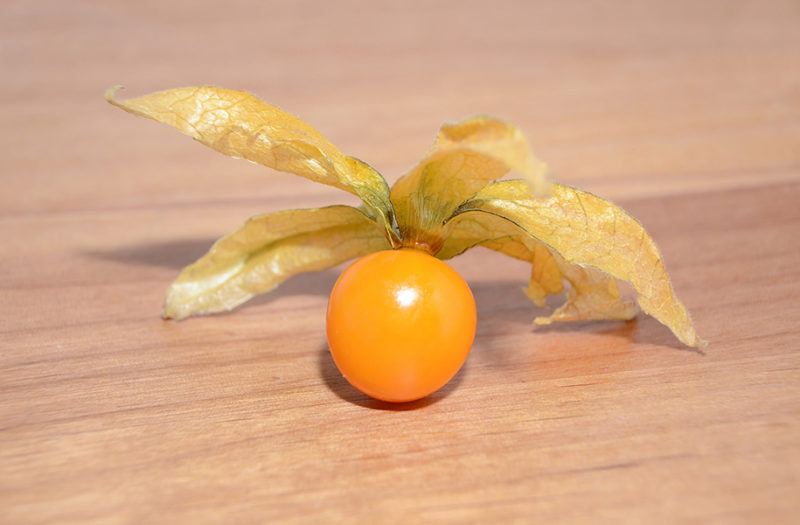 Ground cherry unwrapped
