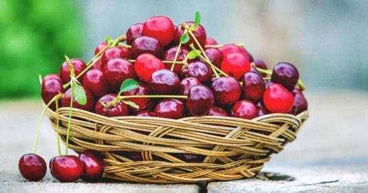 Growing Cherries: The Complete Guide to Plant, Care, and Harvest Cherries