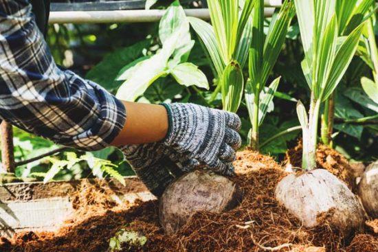 12 Basic Homesteading Skills Every Homesteader Should Learn