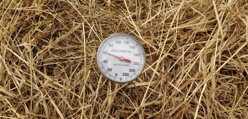 deep straw beddings to heat up soil for spring gardening