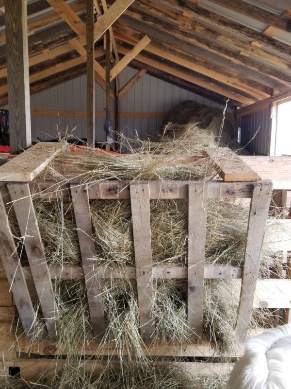 build a hay feeder