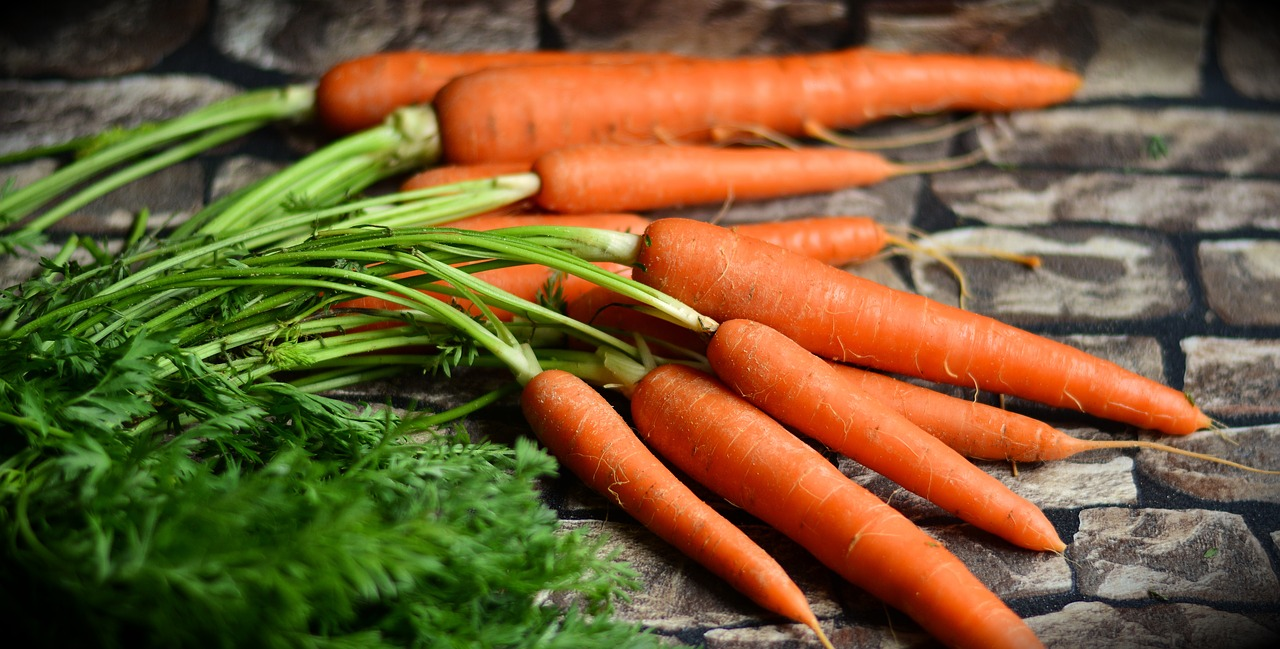carrots are suited to zone eleven gardening