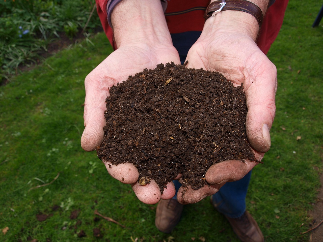 mulching is part of the april gardening tips list