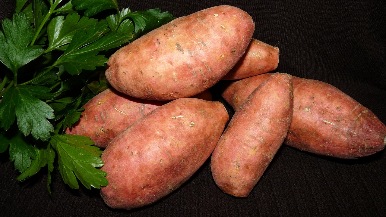 planting sweet potatoes as part of april gardening tips
