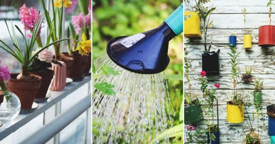 18 Gardening Methods to Choose From to Maximize Your Space