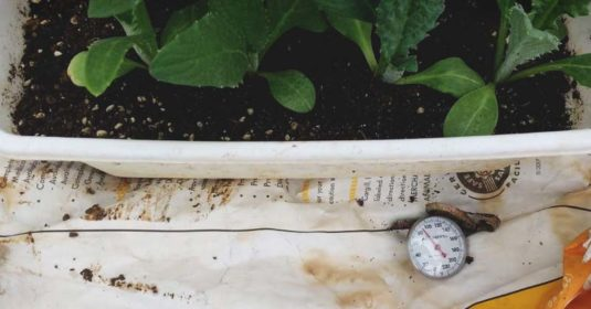 Hotbed Gardening: Add a Little Heat to Your Gardening Repertoire