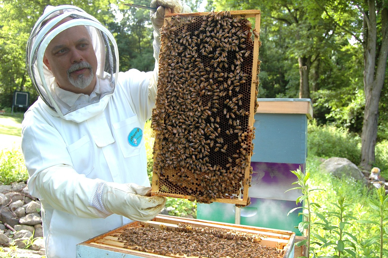 Beekeeping is not for everyone