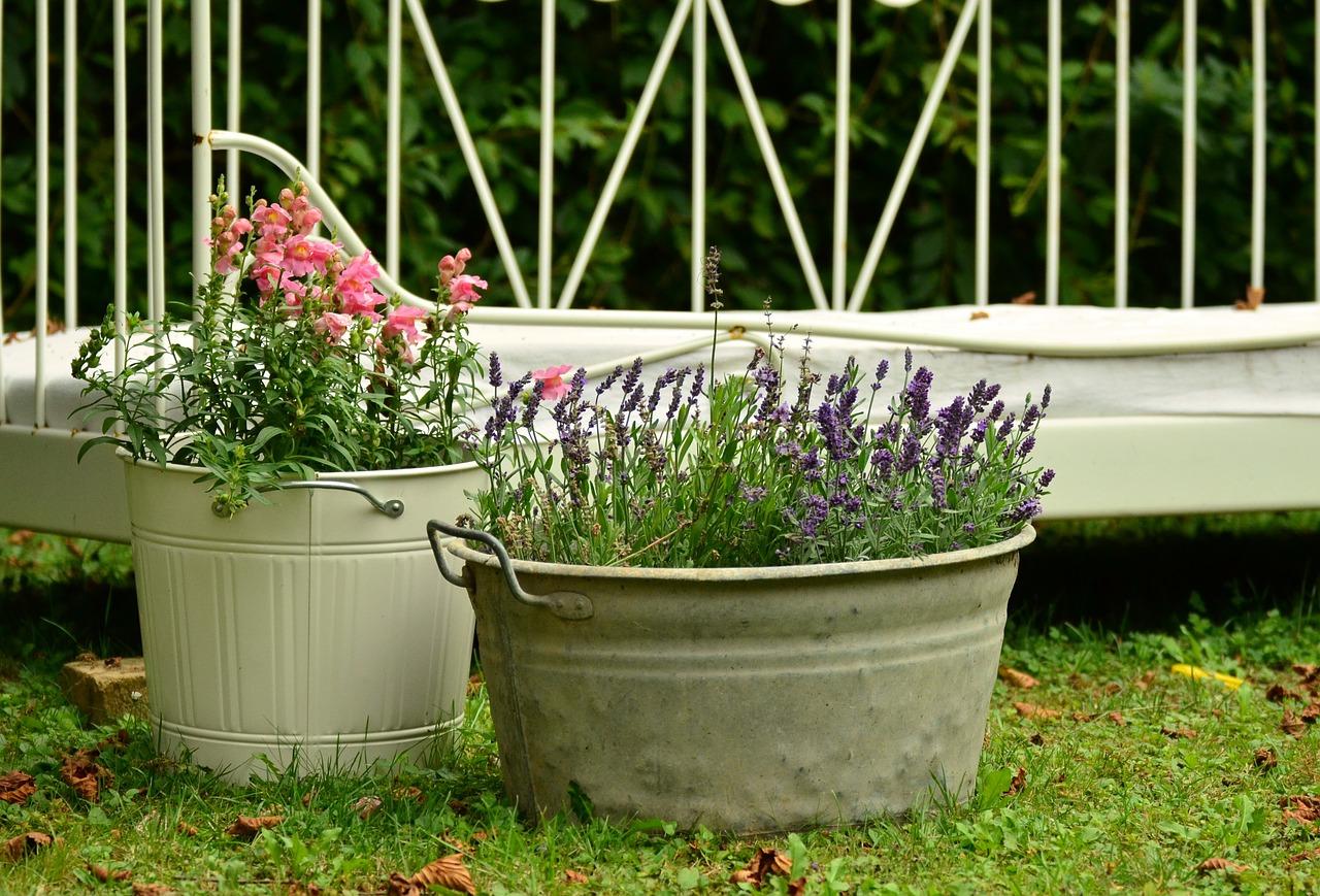evaluate gardening methods - consider container gardening
