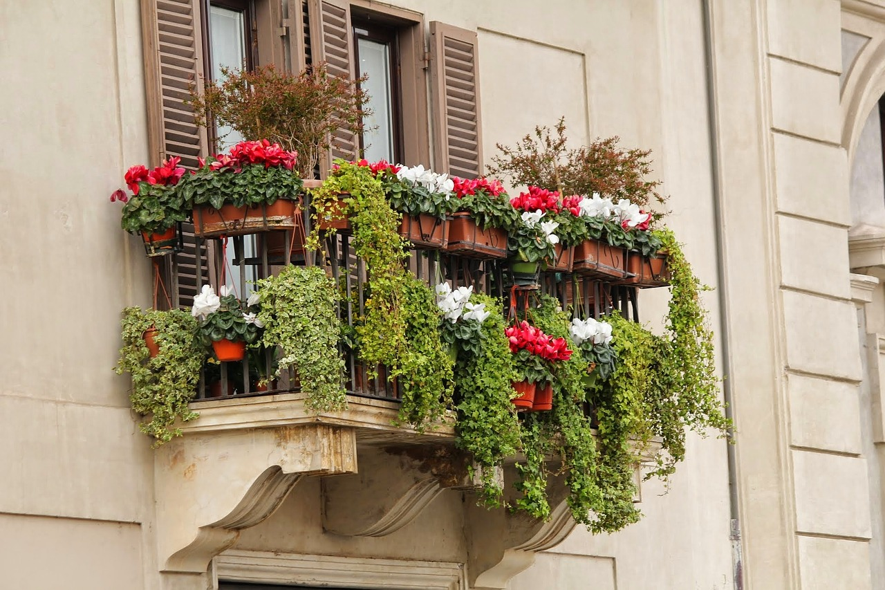 Beautiful window box