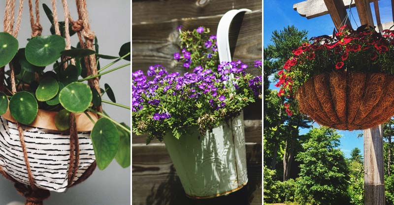 14 DIY Hanging Baskets to Display Your Floral Masterpieces