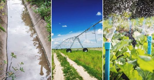 9 Irrigation System Options for Effortless Watering on Your Garden