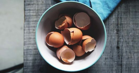 Busting the Myths About Using Eggshells in the Garden