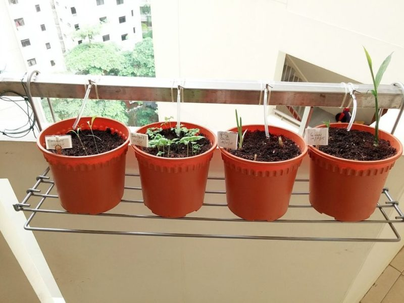 drip irrigation systems for a balcony