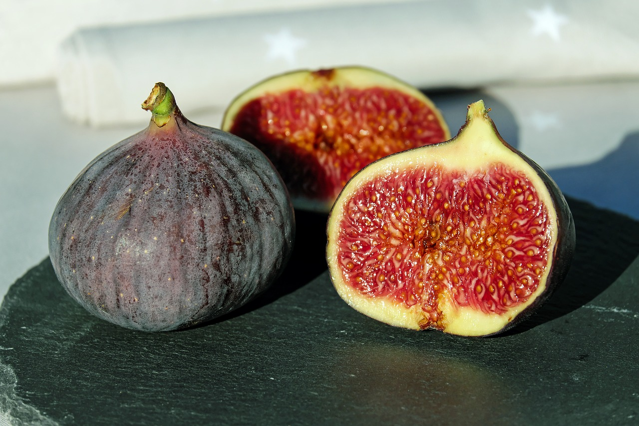growing figs - the brown turkey fig
