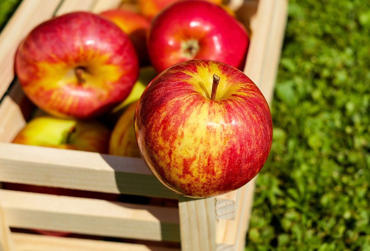 Even apples can do well with burial food preservation