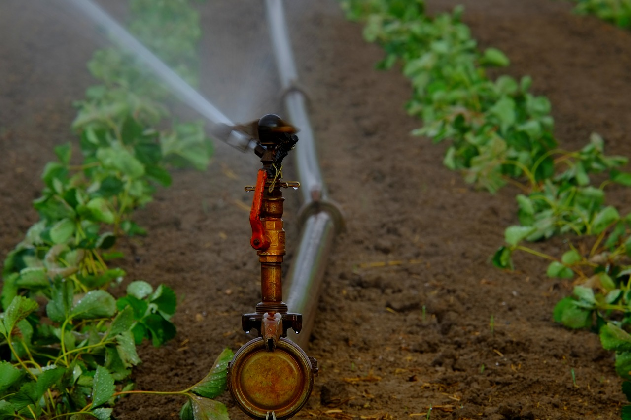 Rotor Irrigation