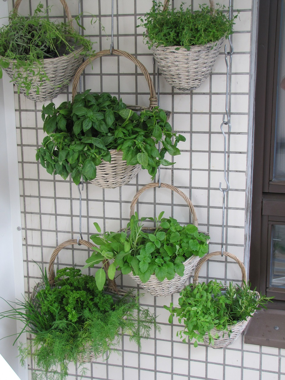 vertical garden irrigation